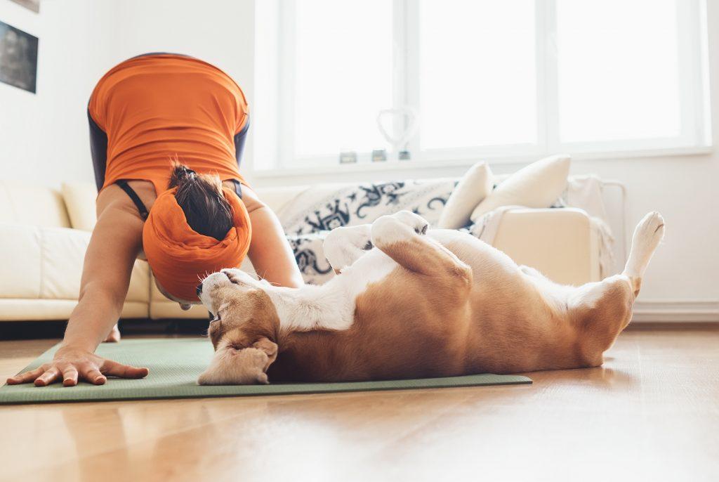 Flow-Yoga